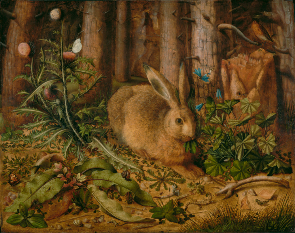 Hans Hoffmann:A Hare in the Forest,16x12
