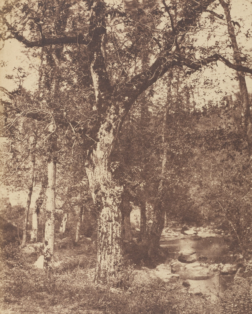 John StewartAttributed to:[Wooded Landscape with Stream],16x12