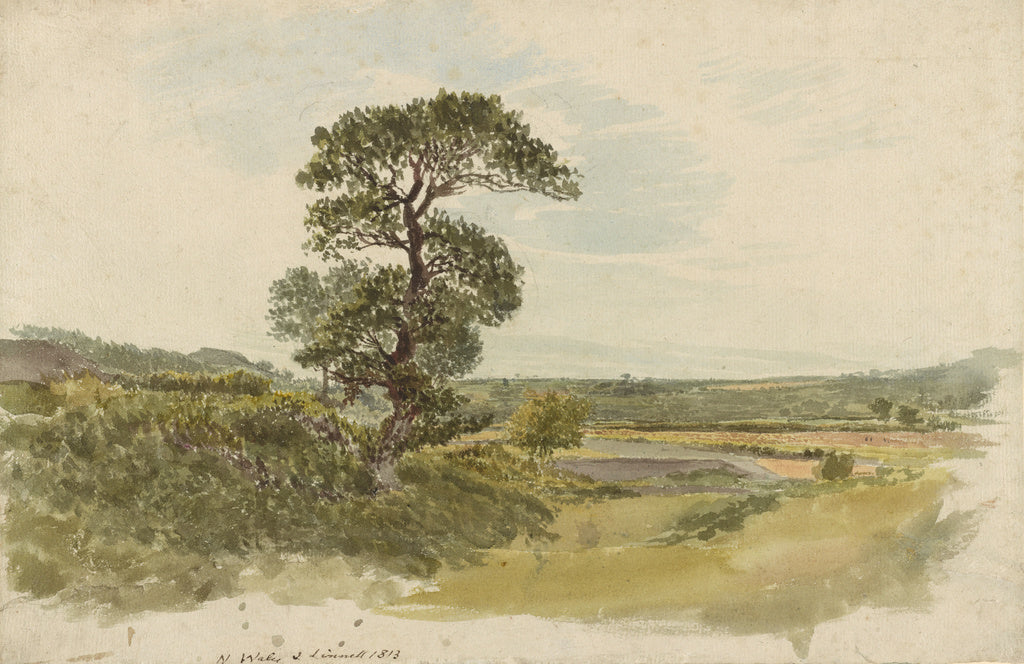 John Linnell:A Landscape in Snowdonia with a Tree in the For,16x12