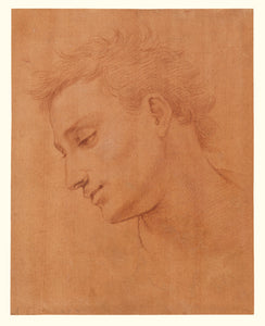 "Girolamo Macchietti:Head of Man in Profile to the Left,16x12""(A3)Poster"