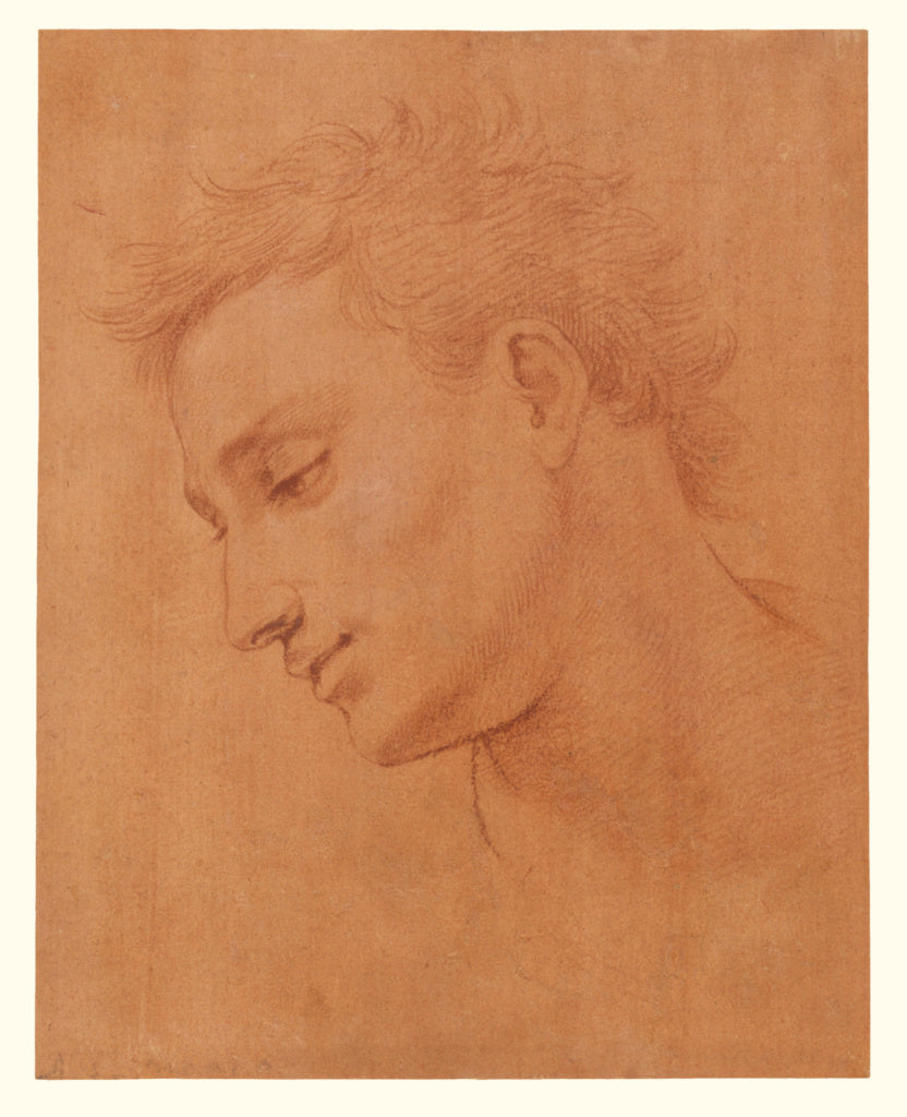 Girolamo Macchietti:Head of Man in Profile to the Left,16x12