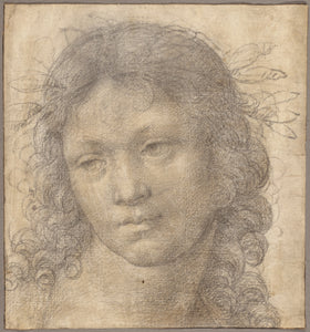"Lorenzo di Credi  , about 1456 - 1536):The Head of a Young B,16x12""(A3)Poster"