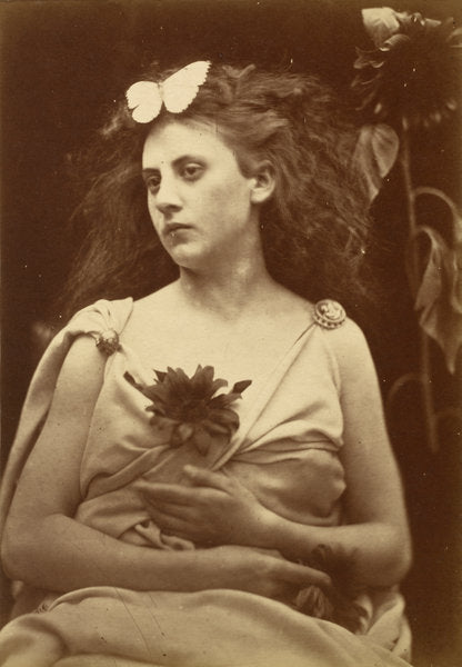 The Sunflower by Julia Margaret Cameron (British, 1815 - 1879), 16X12