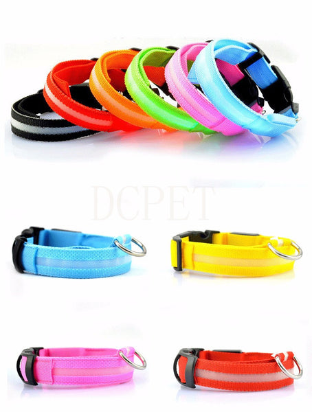 USB LED Dog Collar   Flashing Glow in the Dark Lighted