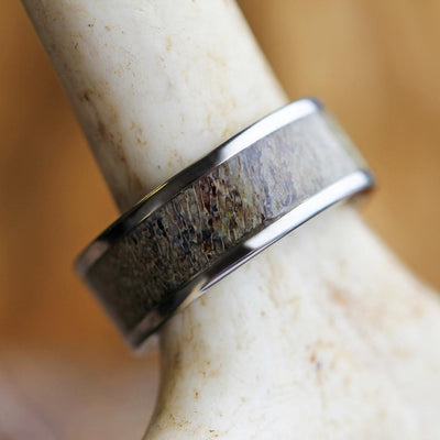 Deer Antler Ring pictured on antler
