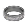Meteorite Shaving Ring in Titanium