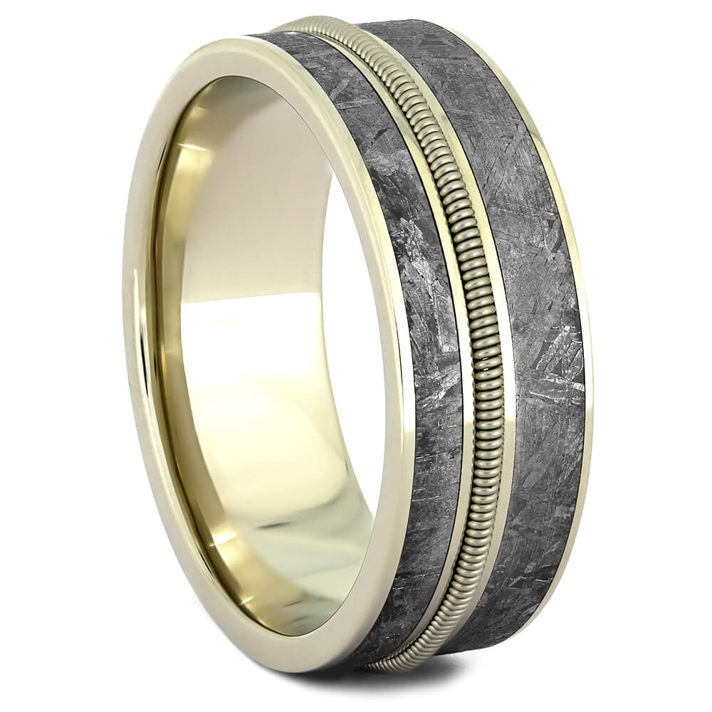 Cello String Ring with Gibeon Meteorite in White Gold-4369 - Jewelry by Johan