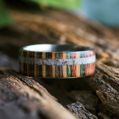 Titanium and Colorful Wood Ring