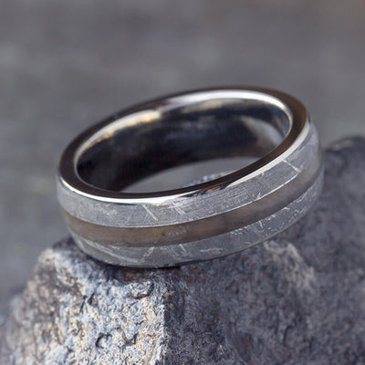 Petrified Wood Men's Ring With Gibeon Meteorite In Titanium-3110 - Jewelry by Johan
