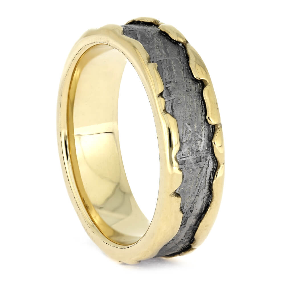 Meteorite Wedding Ring with Wavy Gold Profile, Size 8.5-RS11280 - Jewelry by Johan