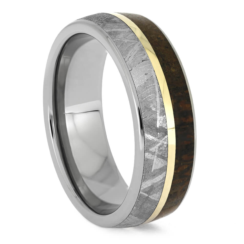 Titanium Ring with Meteorite and Fossil