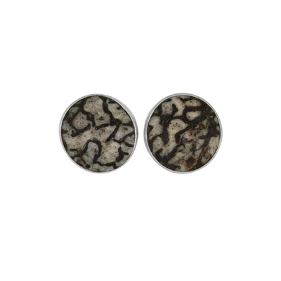 Unique Dinosaur Bone Stud Earrings, Made to Order-3454 - Jewelry by Johan