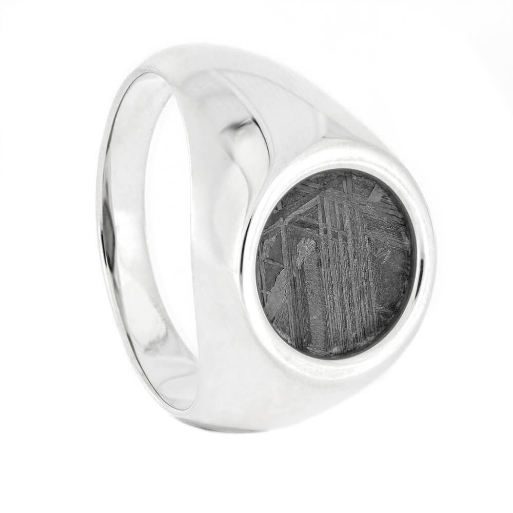 Meteorite Signet Style Ring in Silver, Size 10-RS10745 - Jewelry by Johan
