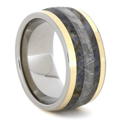 Titanium Ring With Meteorite, Dinosaur Bone, And 14k Yellow Gold