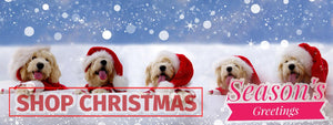 Dog Krazy Gifts - Christmas Grotto Banner, Shop Christmas Now