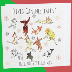 Dog Krazy Gifts - Eleven Canines Leaping - Part of the 12 Dogs of Christmas card collection available from DogKrazyGifts.co.uk