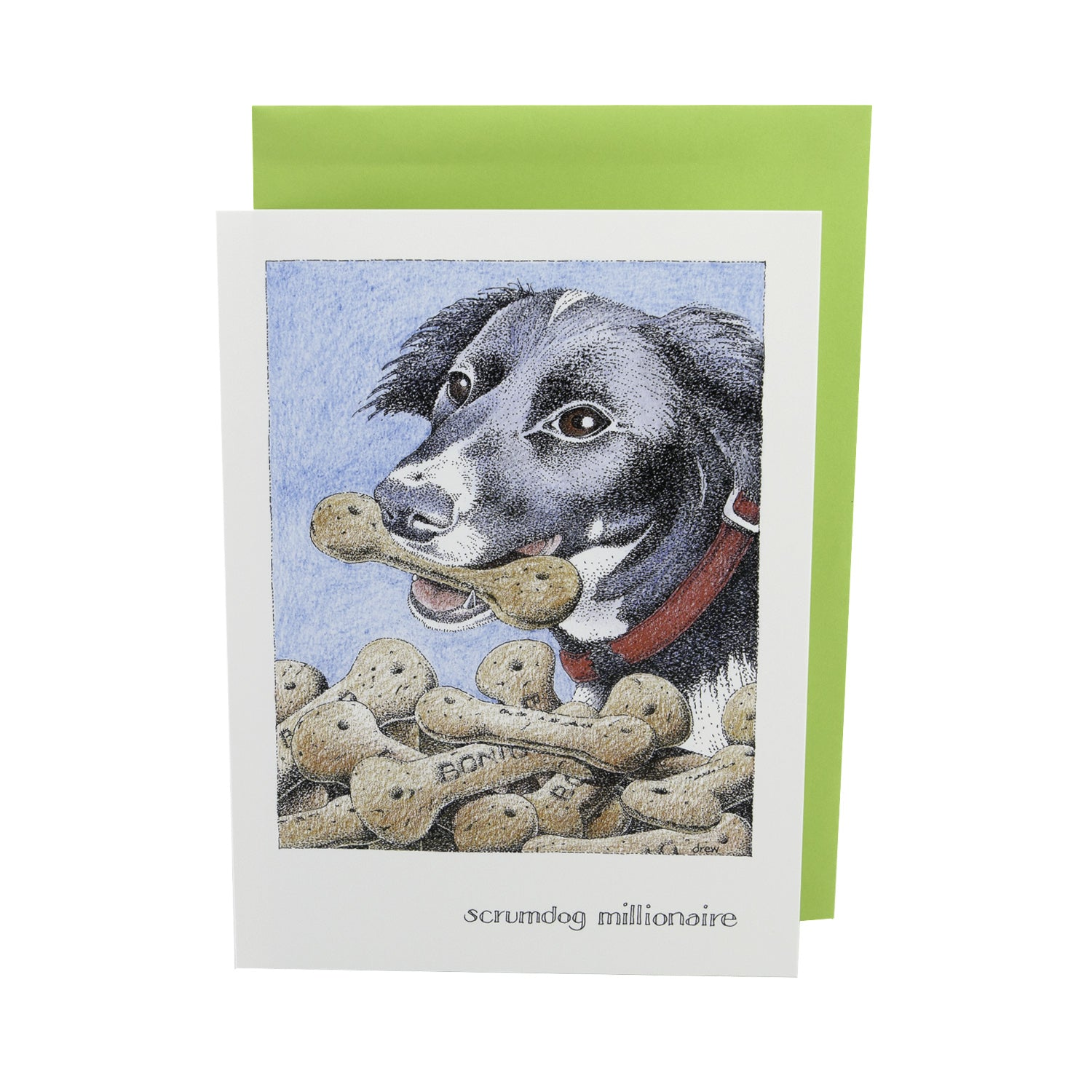 DogKrazy.Gifts – Simon Drew Scrumdog Millionaire, Humorous card featuring a Collie Dog. Part of the Simon Drew Dog Collection available from Dog Krazy Gifts
