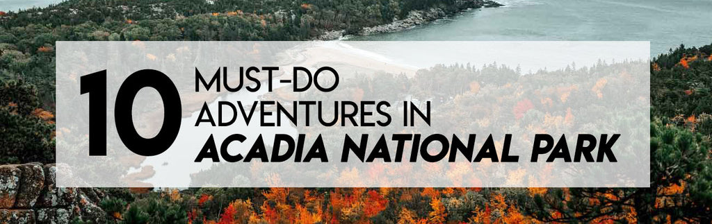 10 must do adventures in acadia national park