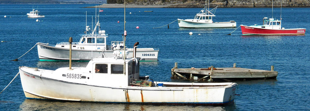 bar-harbor-boats-maine