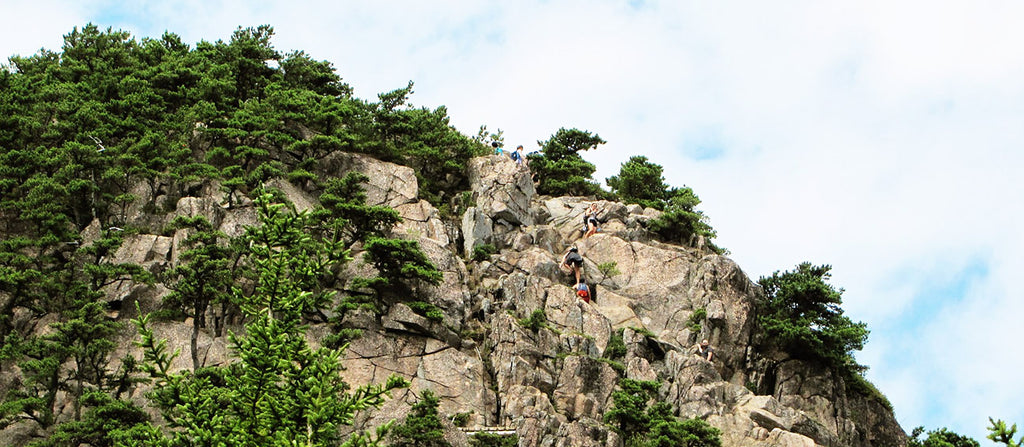 beehive trail hikers in acadia national park