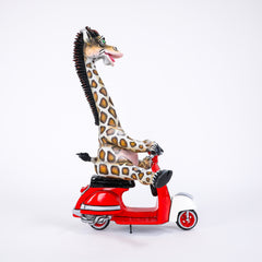 CA Giraffe on Vespa