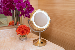 Wynn Resorts Vanity Mirror