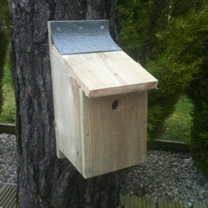 Make your own Bird Box Kit