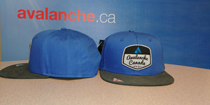 AvCan Cap - Big Fit Royal Blue Trucker