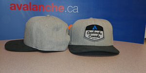 AvCan Cap - Grey Flannel w/ Suede Graphite Curved Visor