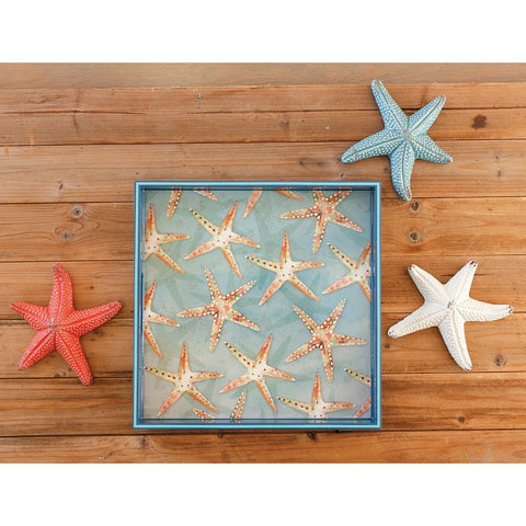 Starfish 15 inch Square Lacquer Art Serving Tray - rockflowerpaper LLC