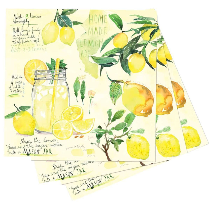 Lemonade Printed Paper Cocktail Napkins - rockflowerpaper LLC