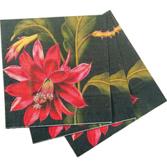 Orchid Cactus Red/Black Printed Paper Cocktail Napkin