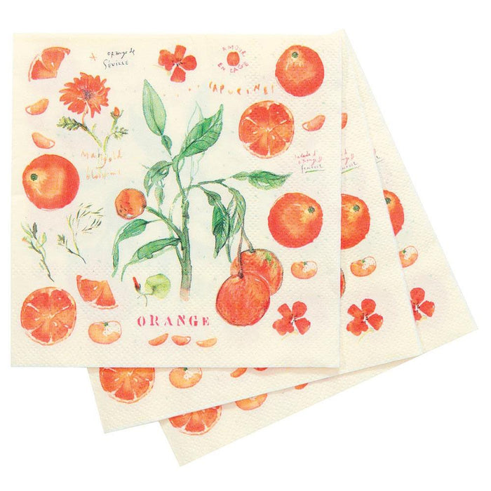 Oranges Orange Printed Paper Napkins - rockflowerpaper LLC