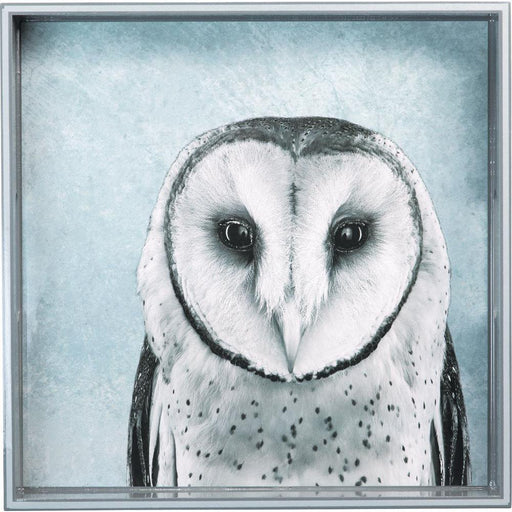 Snowy Owl Blue 15 Inch Square Lacquer Art Serving Tray - rockflowerpaper LLC