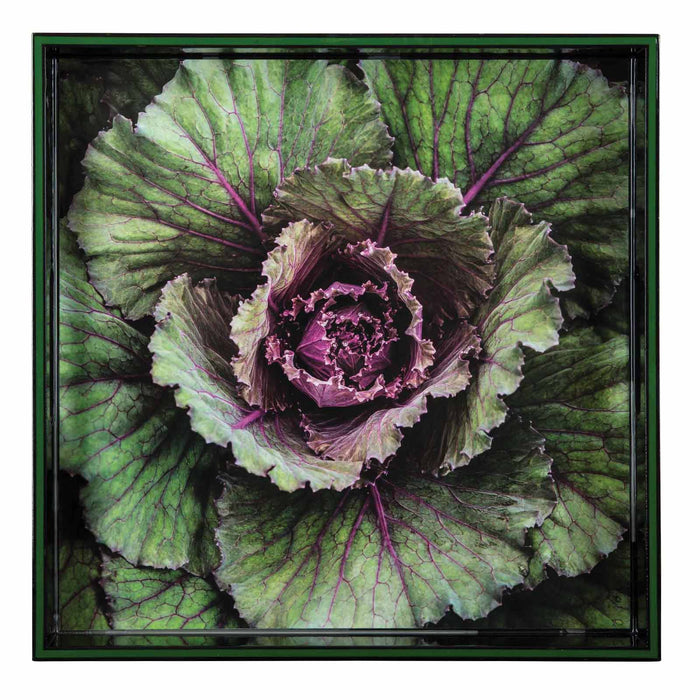 Cabbage Green 15 inch Square Lacquer Art Serving Tray