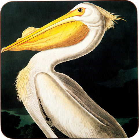 White Pelican Art Coasters - Set of Four