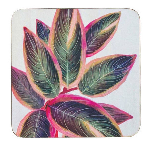 Rubber Plant Art Coasters - Set of Four