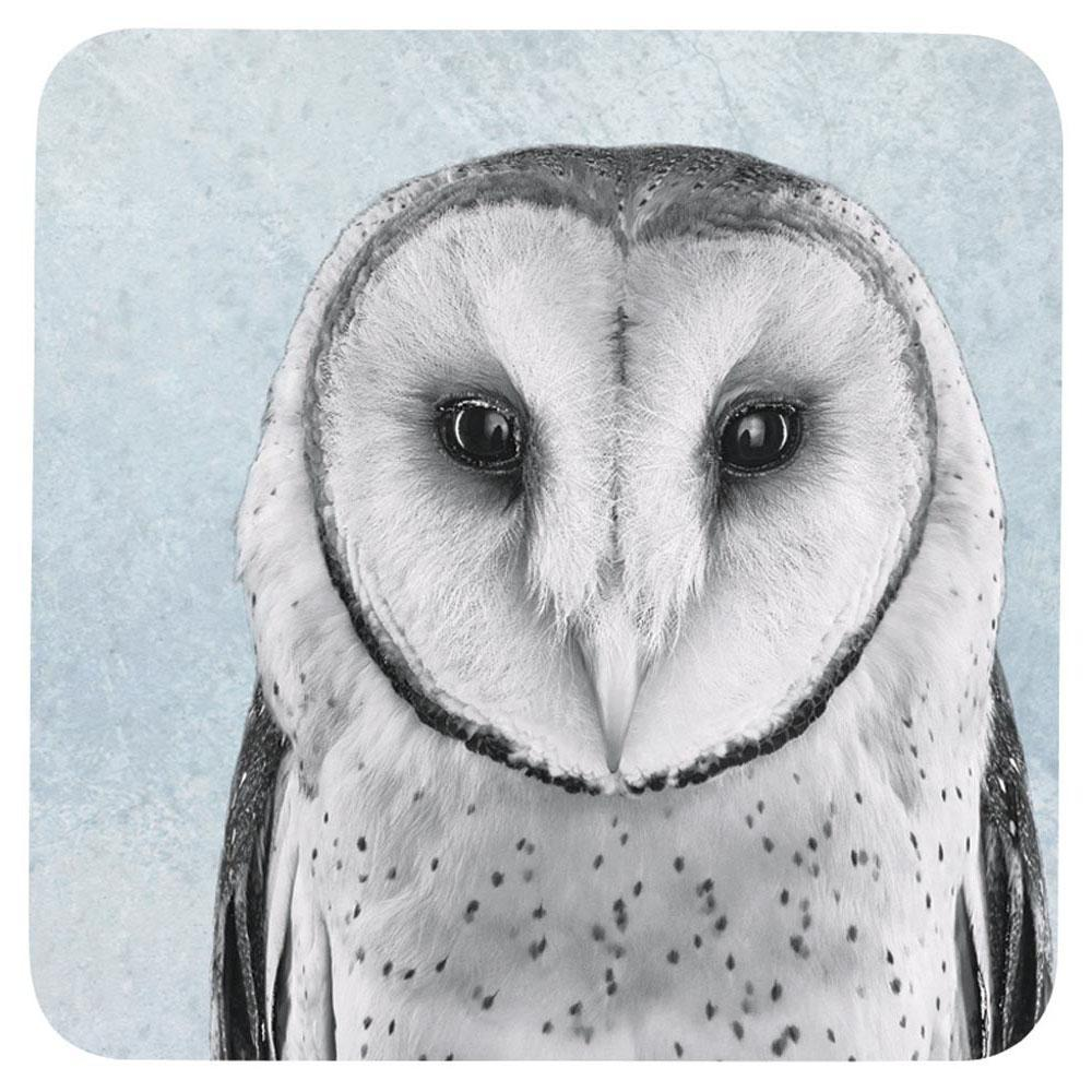 Snowy Owl Neutral Square Art Coasters - Set Of Four - rockflowerpaper LLC