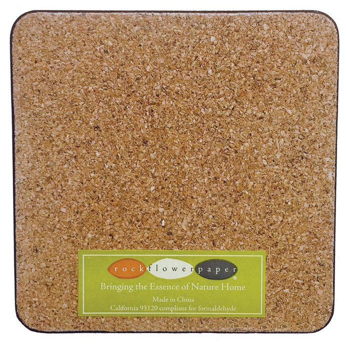 Sandbar Square Art Coasters - Set of 4 - rockflowerpaper LLC