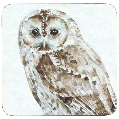 Barred Owl Neutral Square Art Coasters - Set of 4