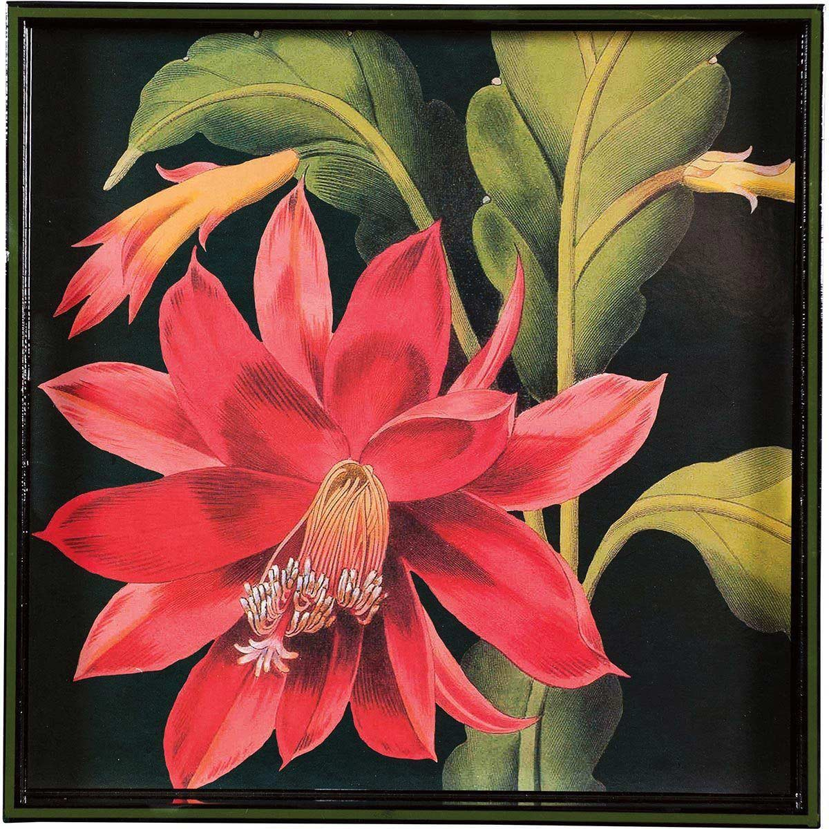 lacquer art tray with black background and large red flower