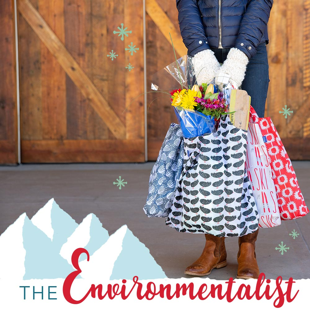 holiday gifts for the environmentalist