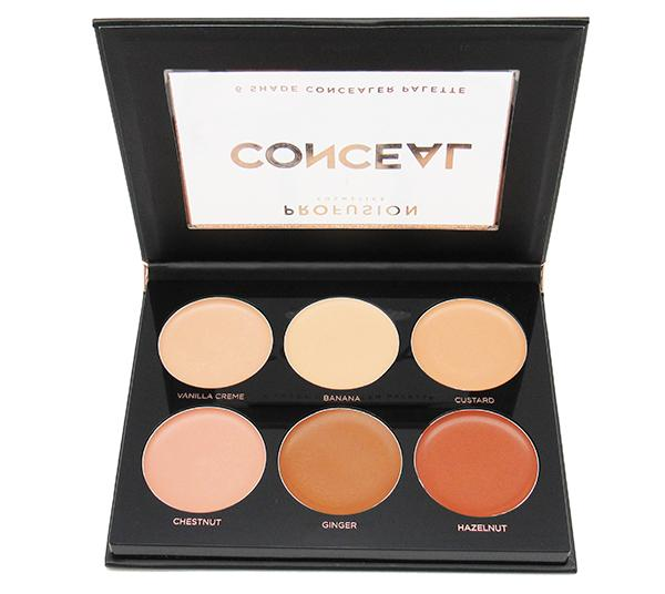 Profusion 6 Shade Concealer Palette - Wholesale Pack 24PCS (5111)