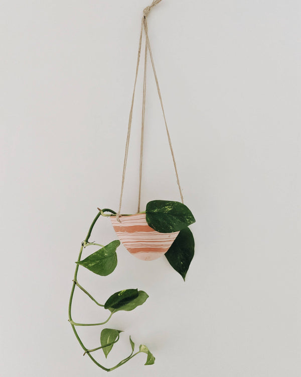Horizon Hanging Planter