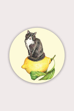 Lemon Cat Sticker - Proper