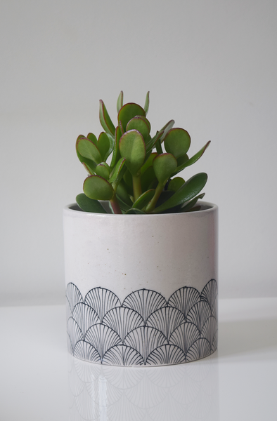 pankha, black and white fan patterned planter with plant