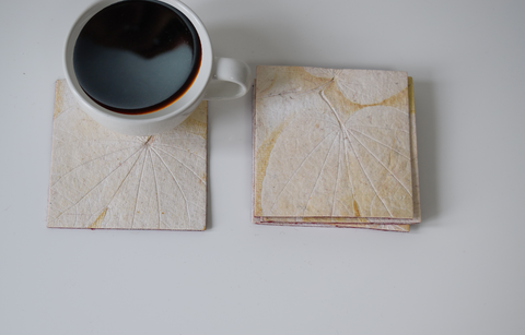 Cream Heartleaf handmade paper coasters-set of 6 of 4