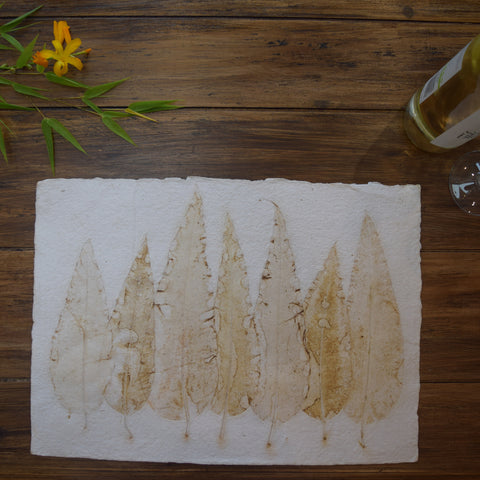 Cream cypressi handmade paper tablemats-set of 6