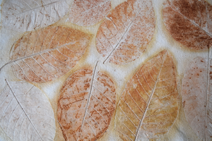 Cream Kadhambam tablemat details of leaf patterns