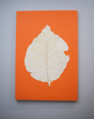 Orange wall poster with teak leaf imprint